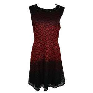 ee1213a4a81 SD Collection Neckline Ombre Lace Dress 12P NWT